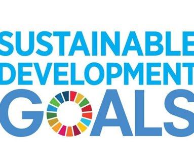 Convegno #svilupposostenibile