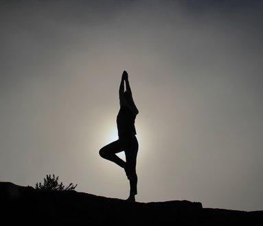 Lema Yoga
