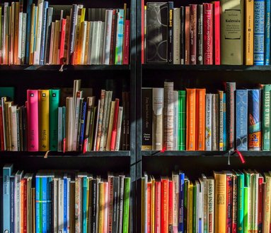Apertura estiva   Biblioteca dei Ragazzi di Besso